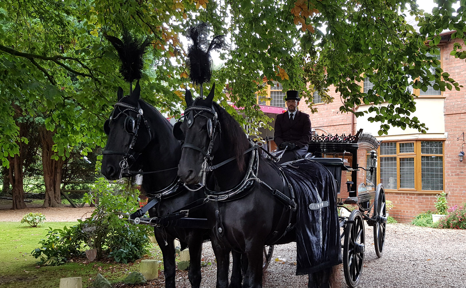Horse Drawn Funeral Carriage